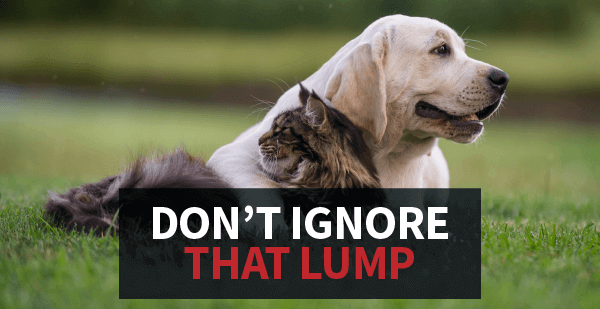 Don't Ignore That Lump
